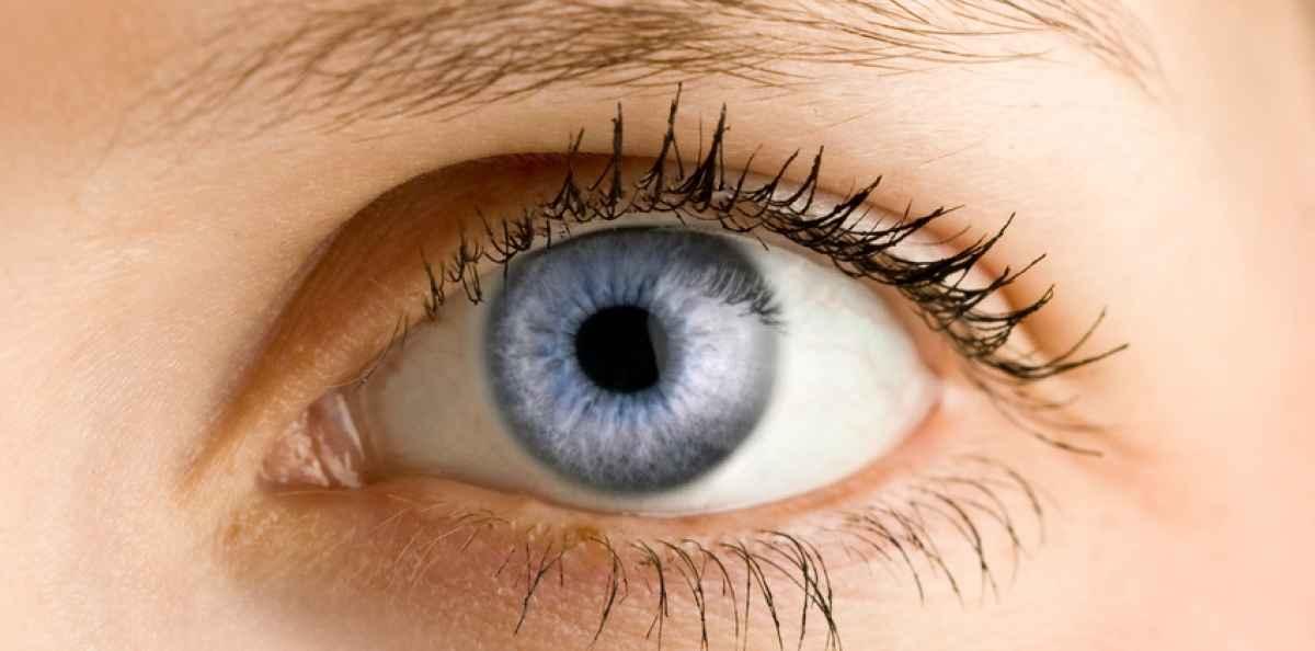 blodådror i ögat