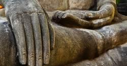 Visste du att Dupuytrens kontraktur även kallas för krokigt finger och vikingasjukan?
